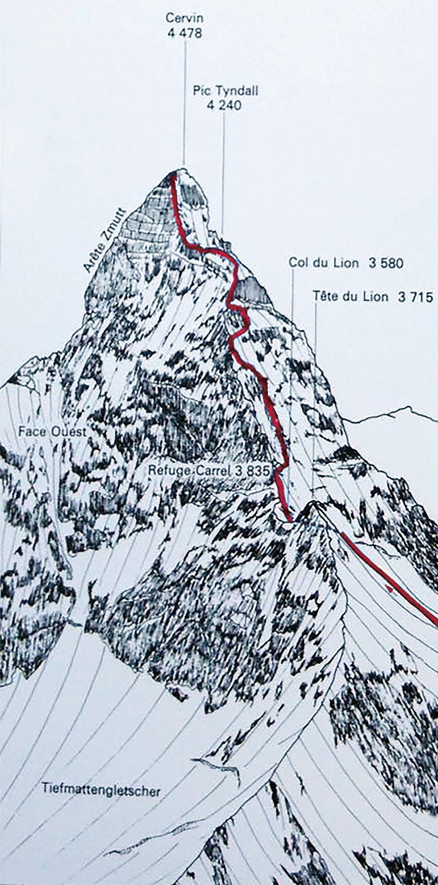 Le parcours de l'ascension du Cervin utilisé par Tania