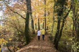 Vie de couple et diabète: vivre ensemble en bonne santé